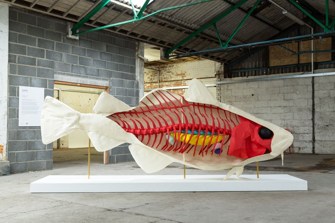 Paper fish art installation. The images shows the inside of the fish with each organ and part of the body created using a different coloured piece of Colorplan paper from GF Smith. The design sculpture was made and displayed as part of Hull City of Culture 2017