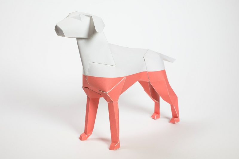 3D paper dog model that is salmon pink colour on the botton and white across the top.