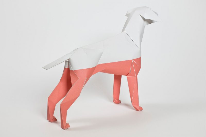 A back wards view of a paper dog model in 3D form. the botton half of the model is pink and the top half is white