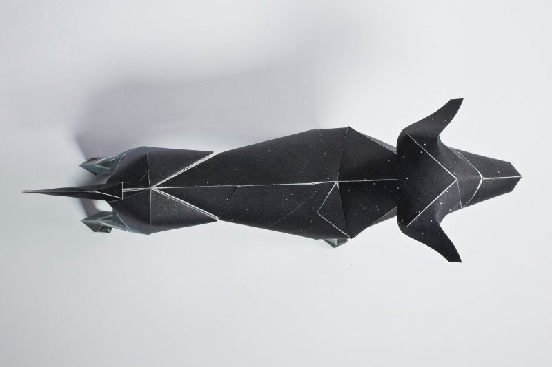 Overhead view of a dark navy blue- almost balck paper dog sculpture. From a project by designers and creators Lazerian. They asked artists and designers to showcase their design and illustrations skills onto the paper dog model. This one was designed and created by Jack Hughes