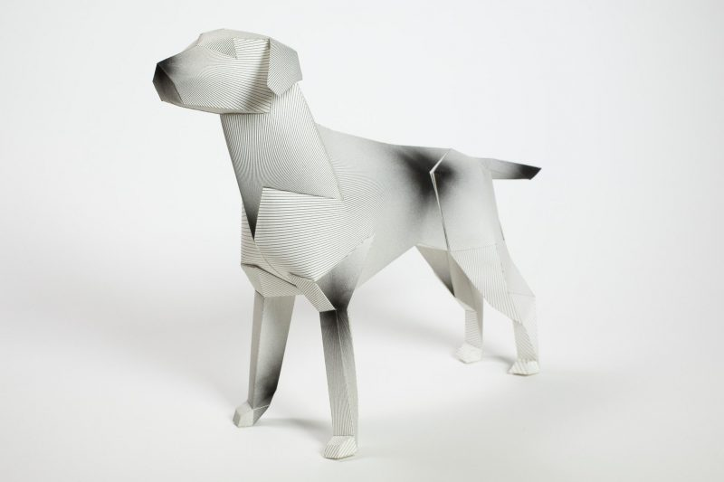 A 3D paper dog model that has a radiating lines to specific parts of the dog that from a distants looks like ink blotches.
