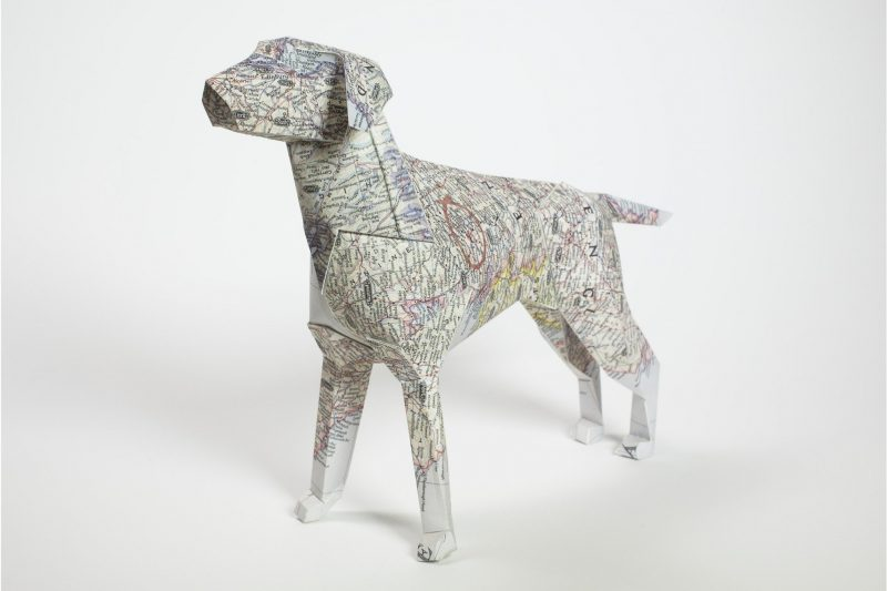 A paper 3D model of a dog with a line map drawn across its body.