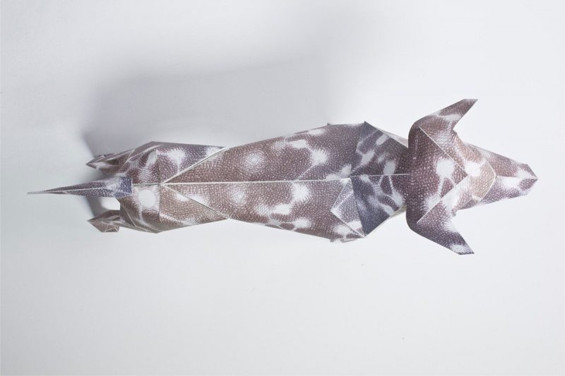 Over head view of a 3D paper dog model with a brown coat and white circles attached with white lines on it