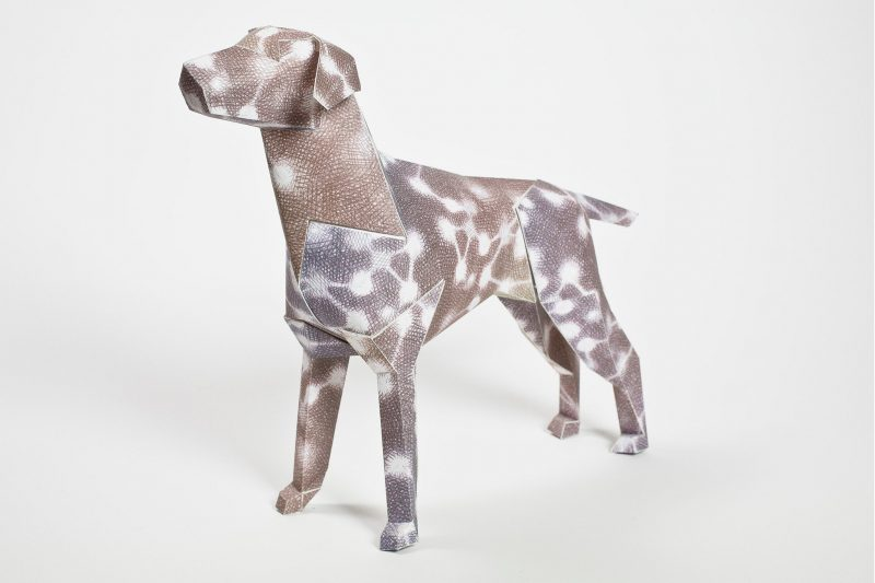 3D paper model of a dog. It is decorated with a brown skin with white circles with lines that connect the circles.