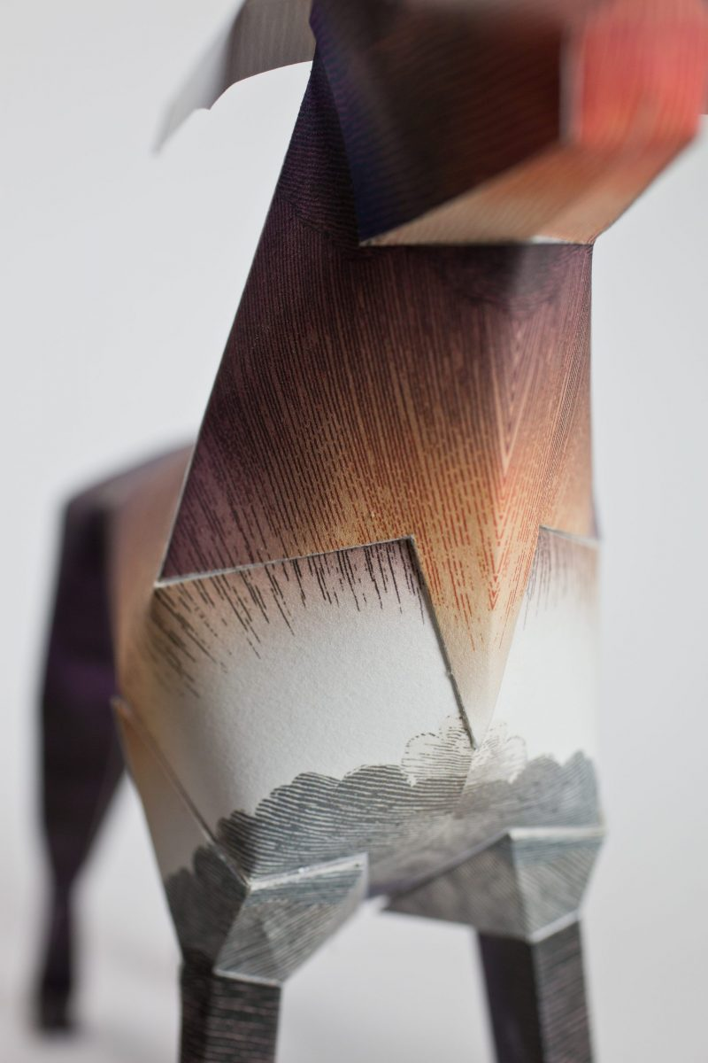 Close up of a paper dog sculpture in 3D . It is focused on the neck area where its a light brown colour gradually moving to a grey at the top of its legs,