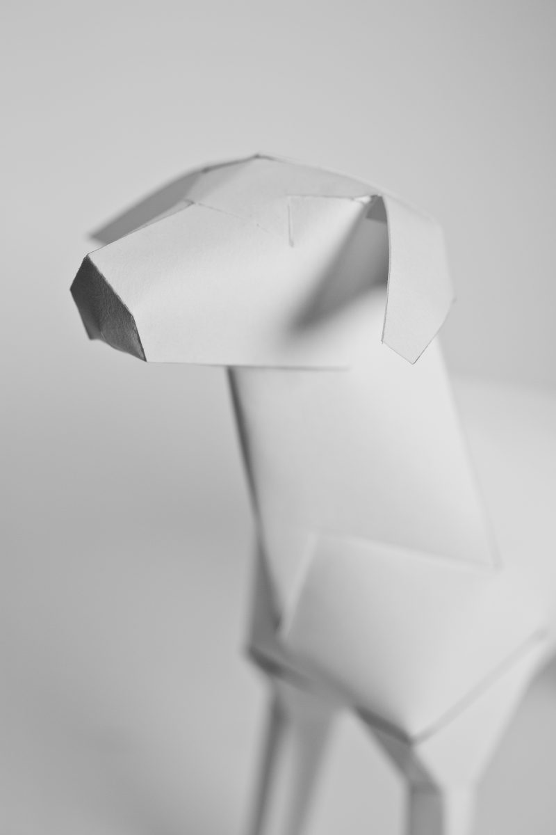 Close up of the head of a paper dog sculpture in 3D form. Designed by Lazerian, a creative design studio who then went on to take the paper dog and involve it in a international exhibition and design project. The paper dog known as gerald is also the logo of the company Lazerian