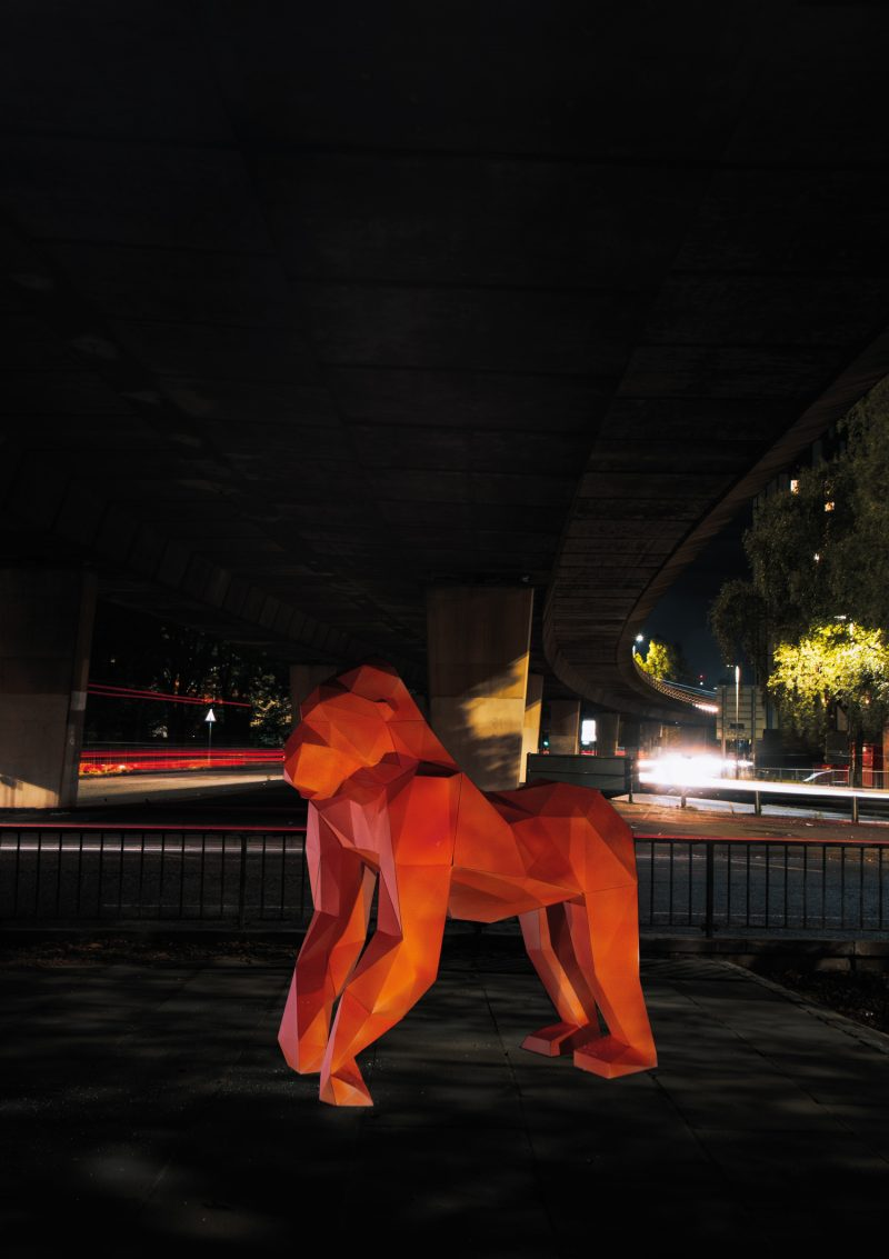 a 3D cardboard structure of a gorilla (lifesize) sprayed with a bright orange vibrant coat. Stood in front of a fast moving motorway with bright lights moving across