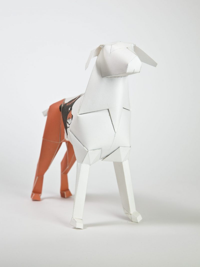 A 3D paper dog model with a peach coloured back half