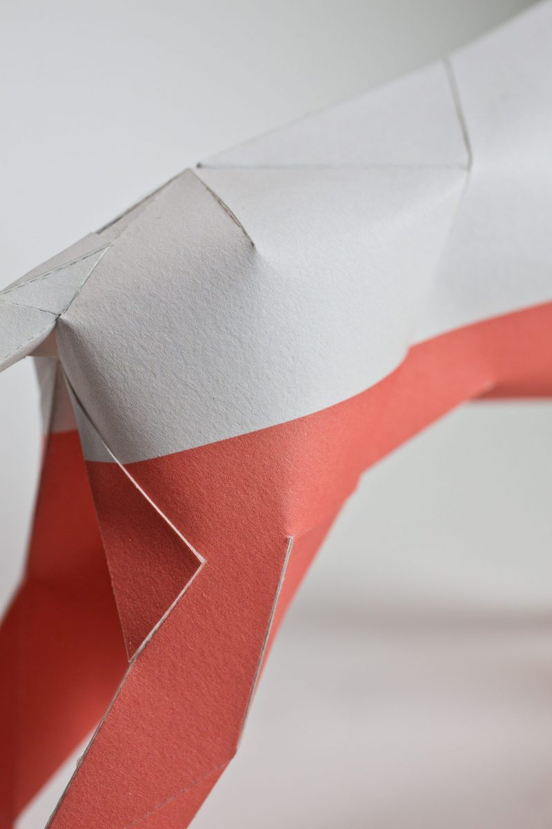 Close up of a paper model sculpture in 3D form. Its focusing on its back legs where the top half is white and the bottom half is pink.